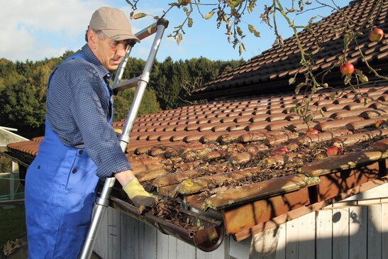 Cleaning Rain Gutter in North FL